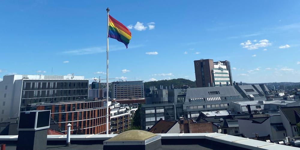 OsloMet markerer Pride