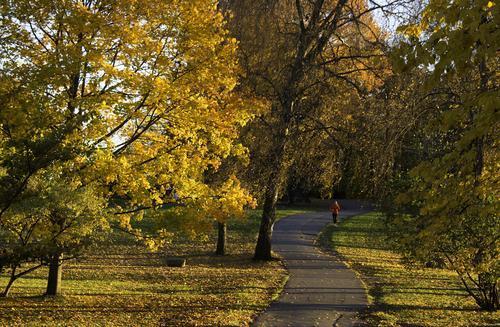 Autumn activity day for OsloMet-staff